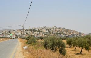 Road in Beit Dajan