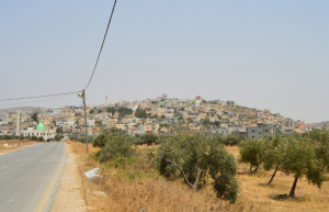 Road in Beit Dajan